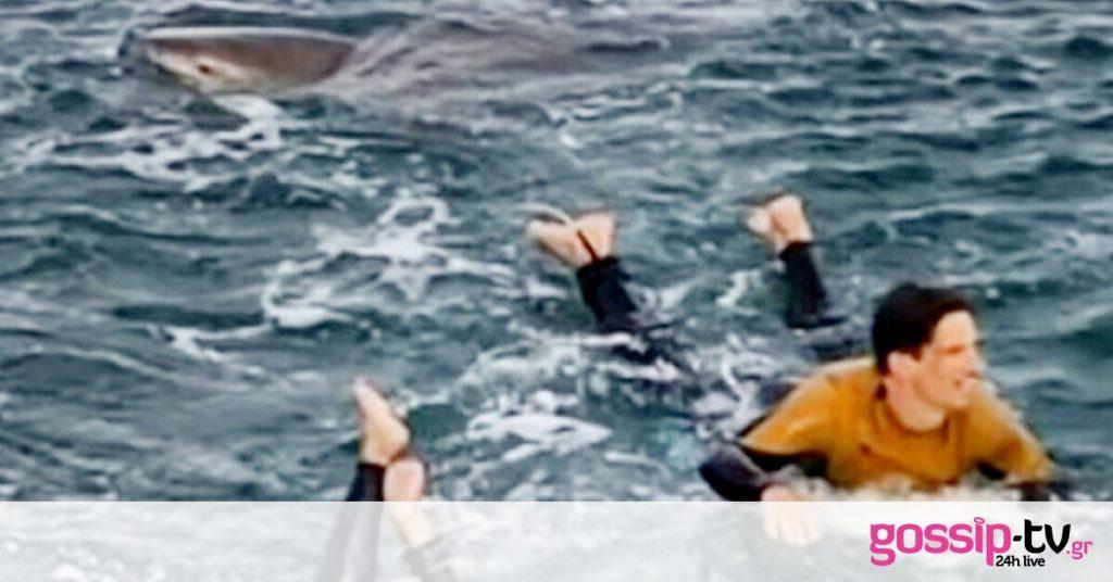Σώθηκε από τα φονικά σαγόνια καρχαρία με τις γροθιές του